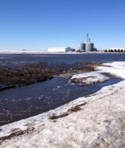 feb2014-floodedfield